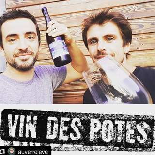 vin-des-potes